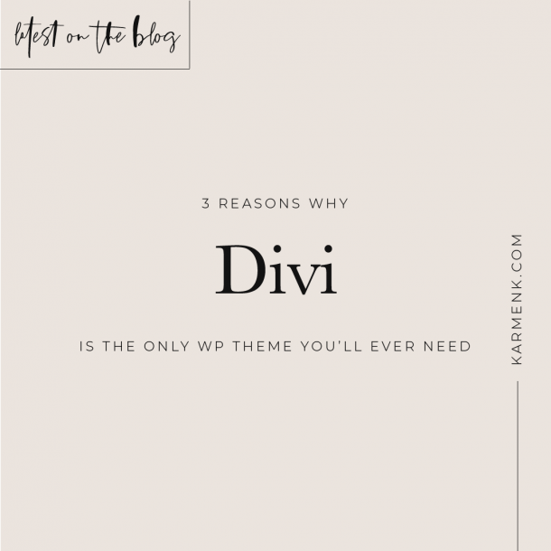 Divi is the only WordPress theme you'll ever need 😎